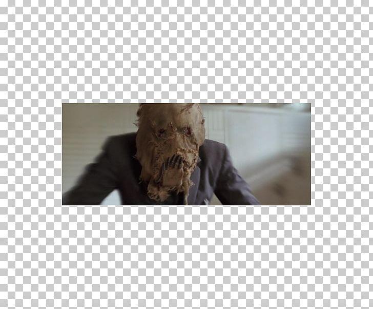 Scarecrow Snout Fur Cillian Murphy PNG, Clipart, Cillian.