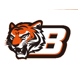 Cincinnati Bengals Logo Png (112+ images in Collection) Page 3.