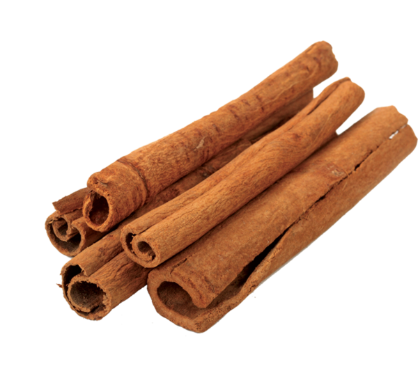 Cinnamon Stick Png Vector, Clipart, PSD.