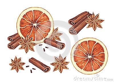 Cinnamon Sticks Stock Illustrations.