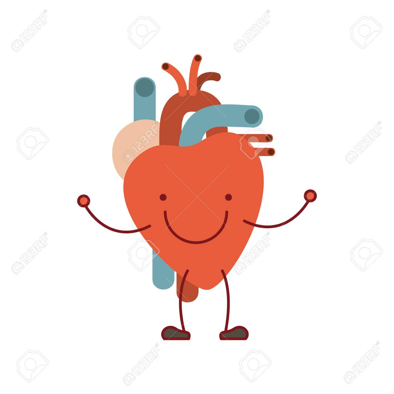 Colorful silhouette caricature with happy face circulatory system.