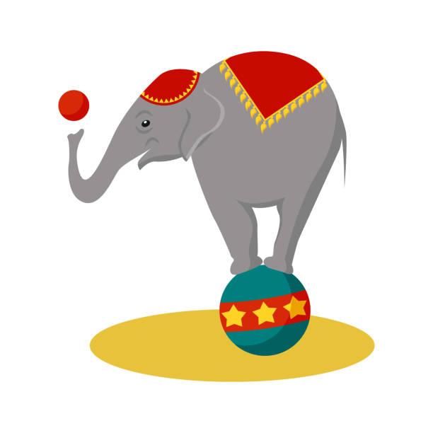 Best Circus Elephant Illustrations, Royalty.
