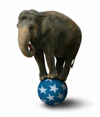 circus elephant png.