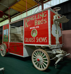Search Results for circus wagons.