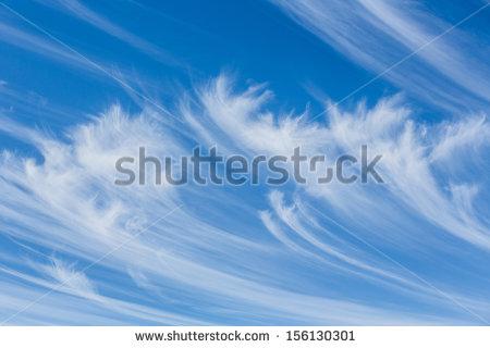 Cirrus clouds clip art