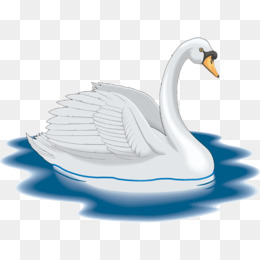 Cisne PNG and Cisne Transparent Clipart Free Download..