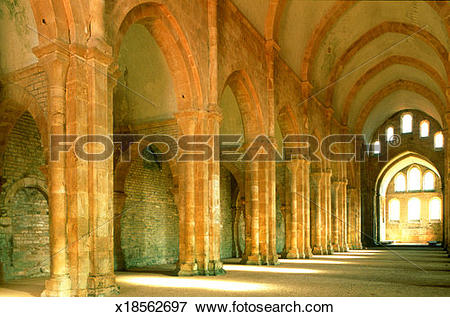 Picture of France, Burgundy, Yonne, nave in Cistercian Abbey of.