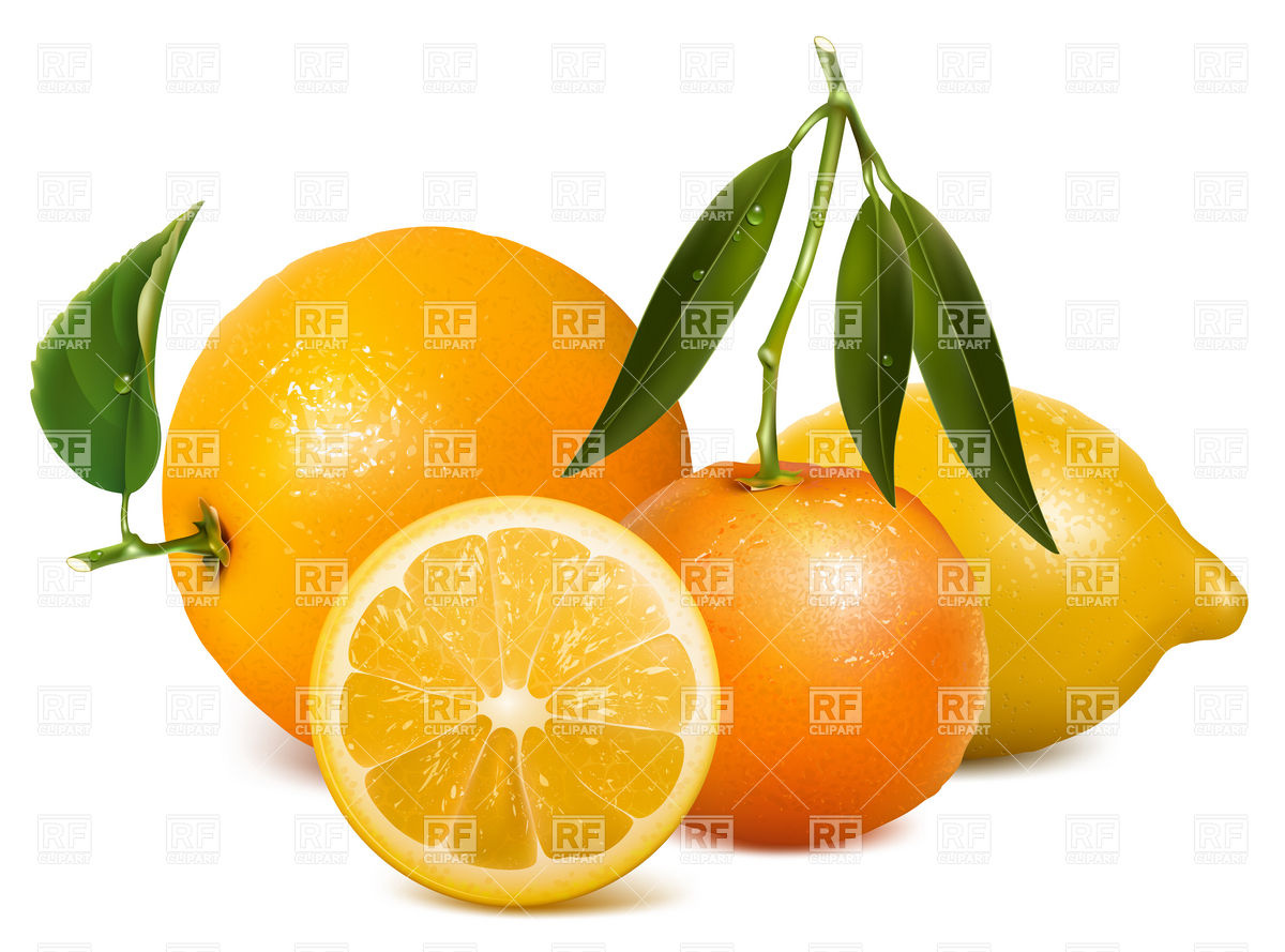 Citric clipart #11