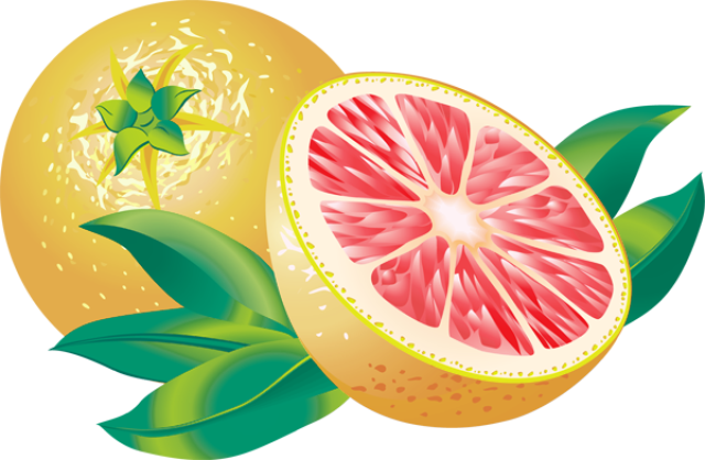Pictures Of Citrus Fruits.