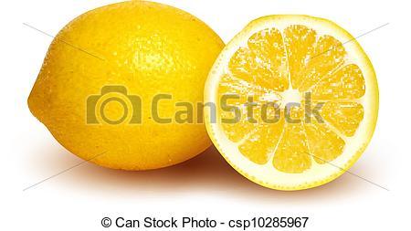 Citron Vector Clipart EPS Images. 382 Citron clip art vector.