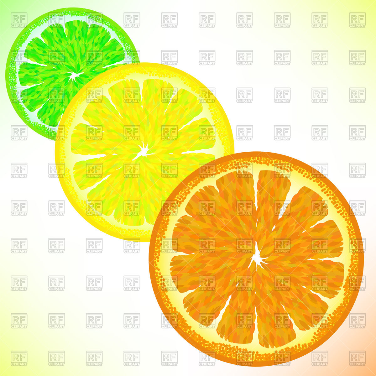 Lime, lemon and orange cutaway Vector Image #67698.