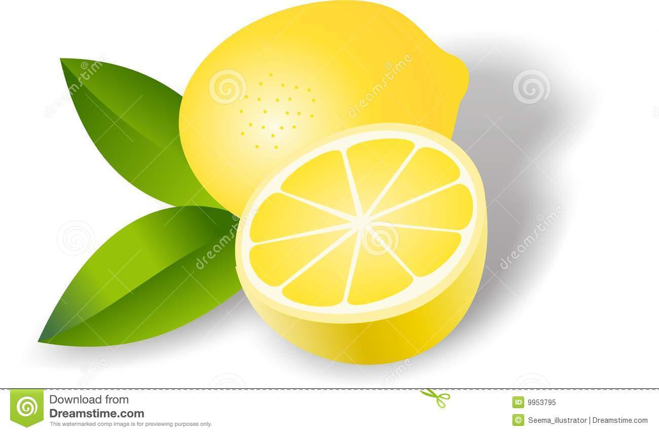Lemon Stock Illustrations.