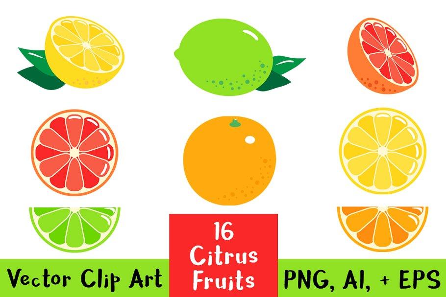 16 Citrus Fruits Clipart.