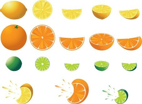 Free Free Citrus Fruit Clipart and Vector Graphics.