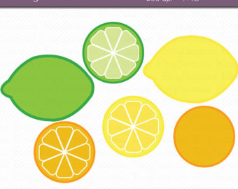 Citrus fruit clipart.