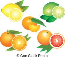 Citrus Vector Clipart EPS Images. 13,903 Citrus clip art vector.