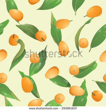 Fortunella Stock Vectors & Vector Clip Art.