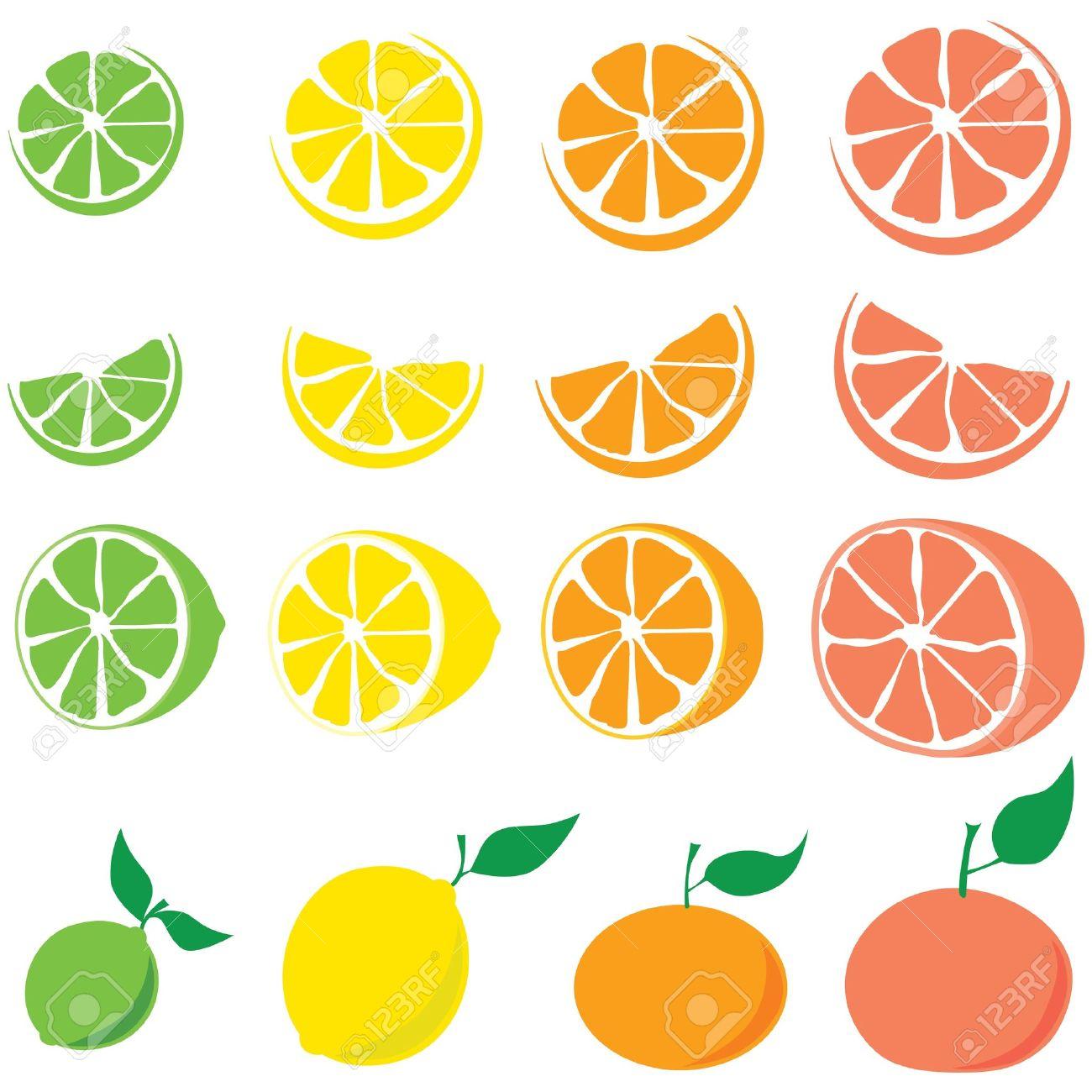 Citrus Fruit: Lime, Lemon, Orange, Grapefruit Royalty Free.