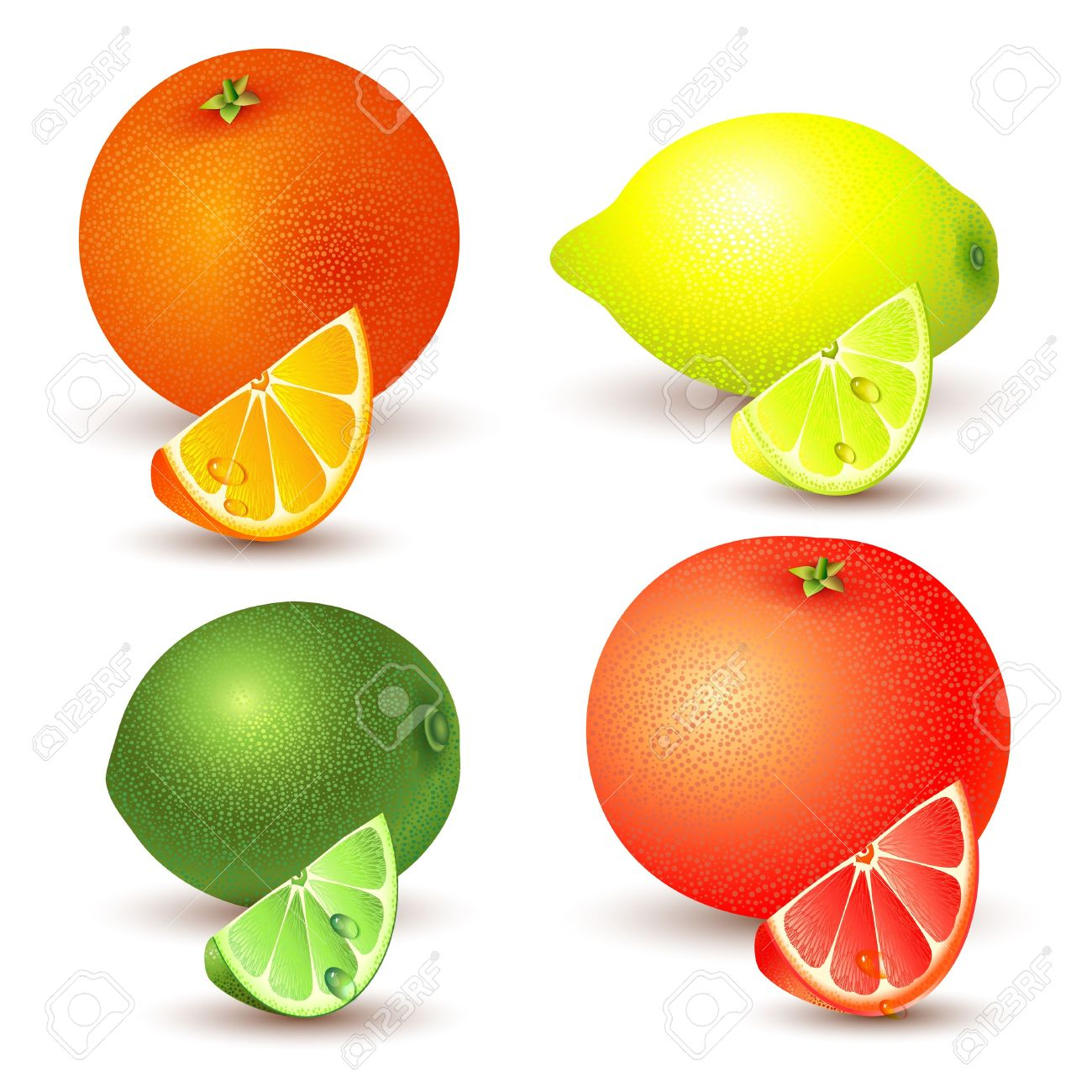 Set Of Citrus Fruit.