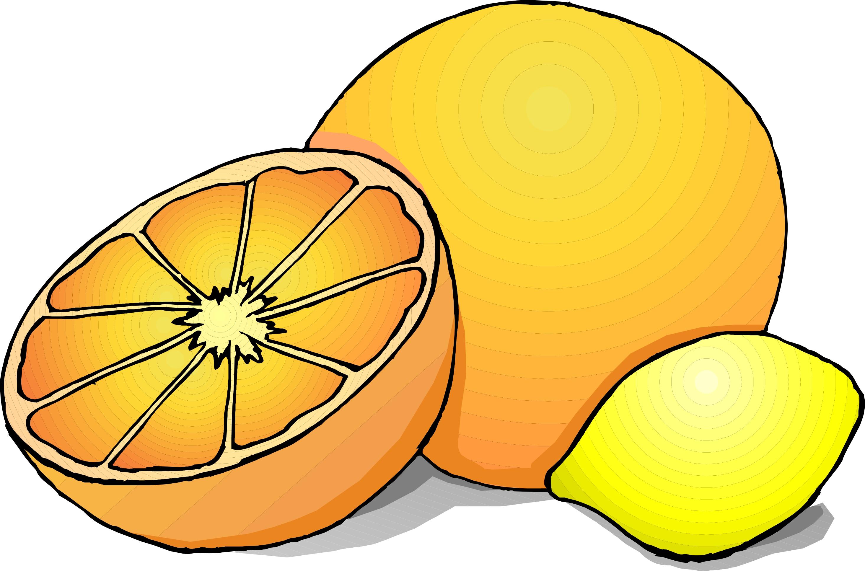 Citrus fruit clipart #4
