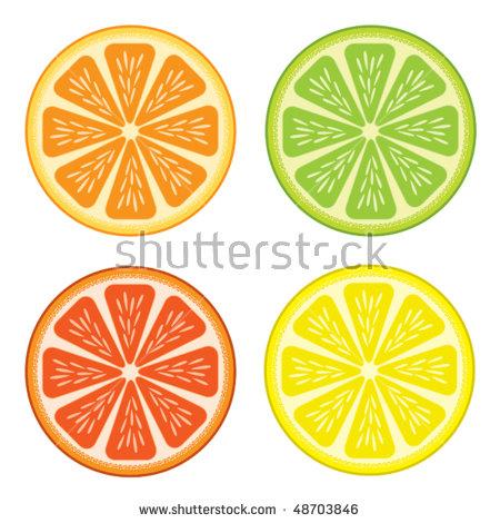 Citrus fruit clipart #19