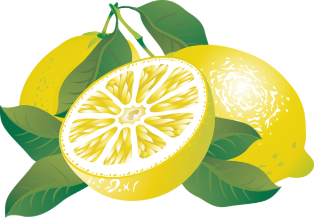 Lemon citrus fruit clipart.