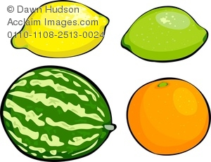 Clipart Image of a Selection of Fruits, Three Citrus Fruits and a.