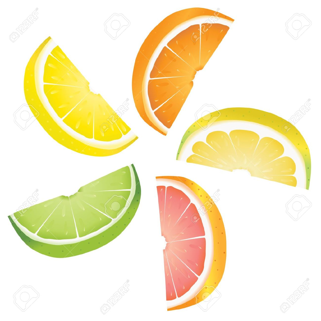 A Selection Of Citrus Fruit Slices Arranged Into A Revolving.