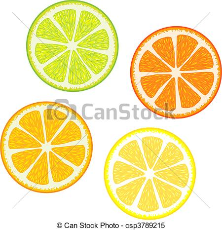 Citrus fruits clipart #14