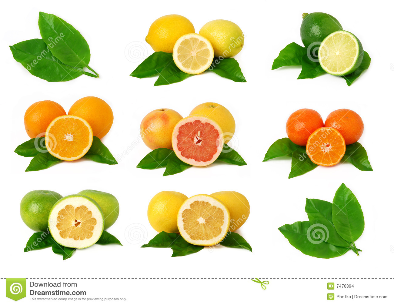 Citrus Fruits Stock Images.