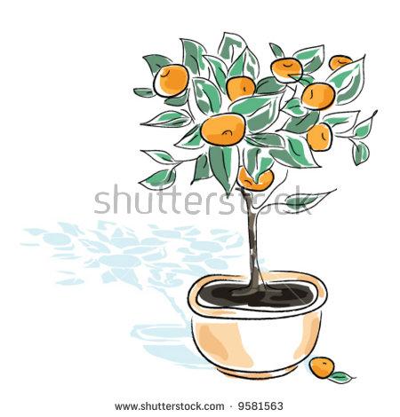 Tangerine Tree Fotografie, snímky pro členy zdarma a vektory.