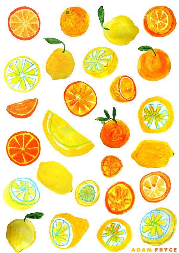 1000+ images about Citrus illustrations on Pinterest.
