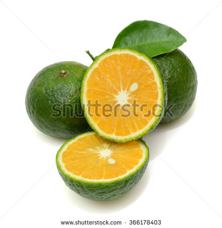 Citrus Nobilis Stock Photos, Images, & Pictures.