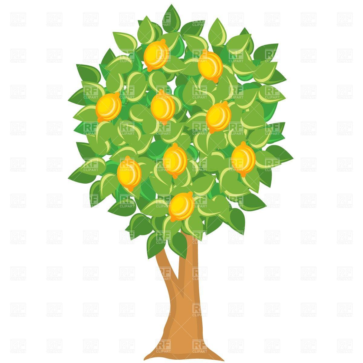 Lemon tree Stock Vector Image.