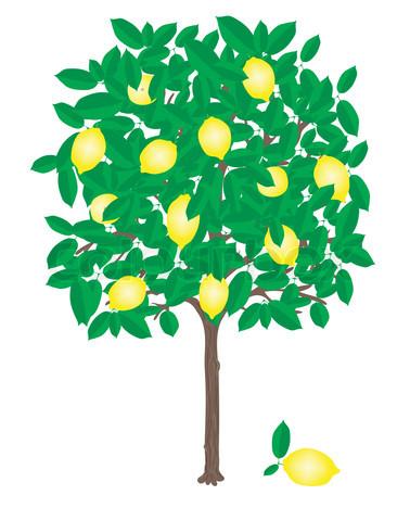 Free Lemon Tree Clipart, Download Free Clip Art, Free Clip.