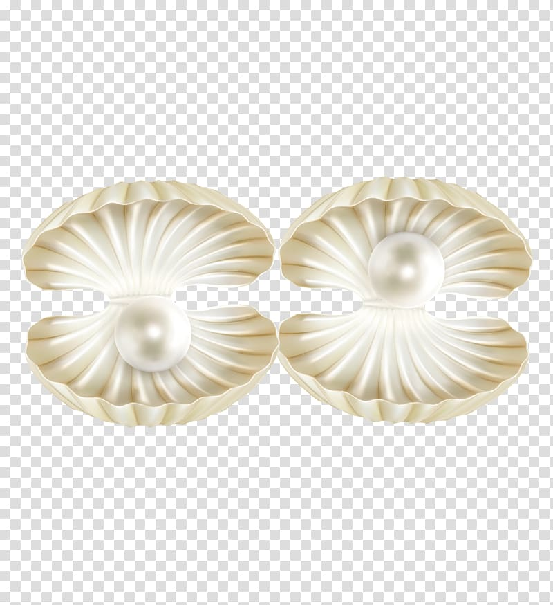 White pearls and clam shells, Pearl Seashell Euclidean.