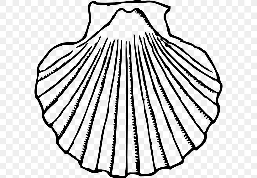 Clam Seashell Oyster Clip Art, PNG, 600x569px, Clam, Black.
