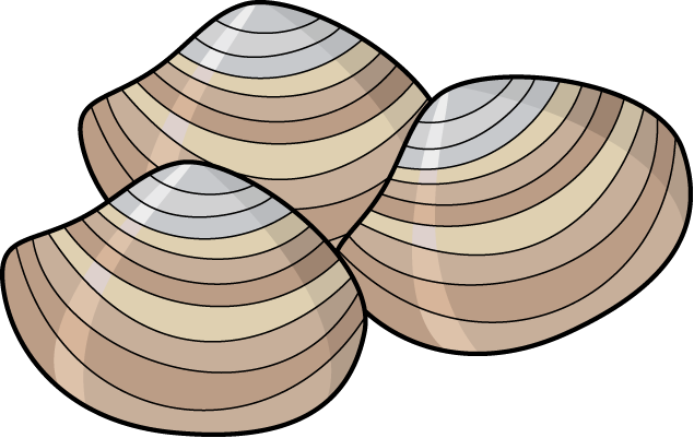 Download Free png Clam Clip Art.