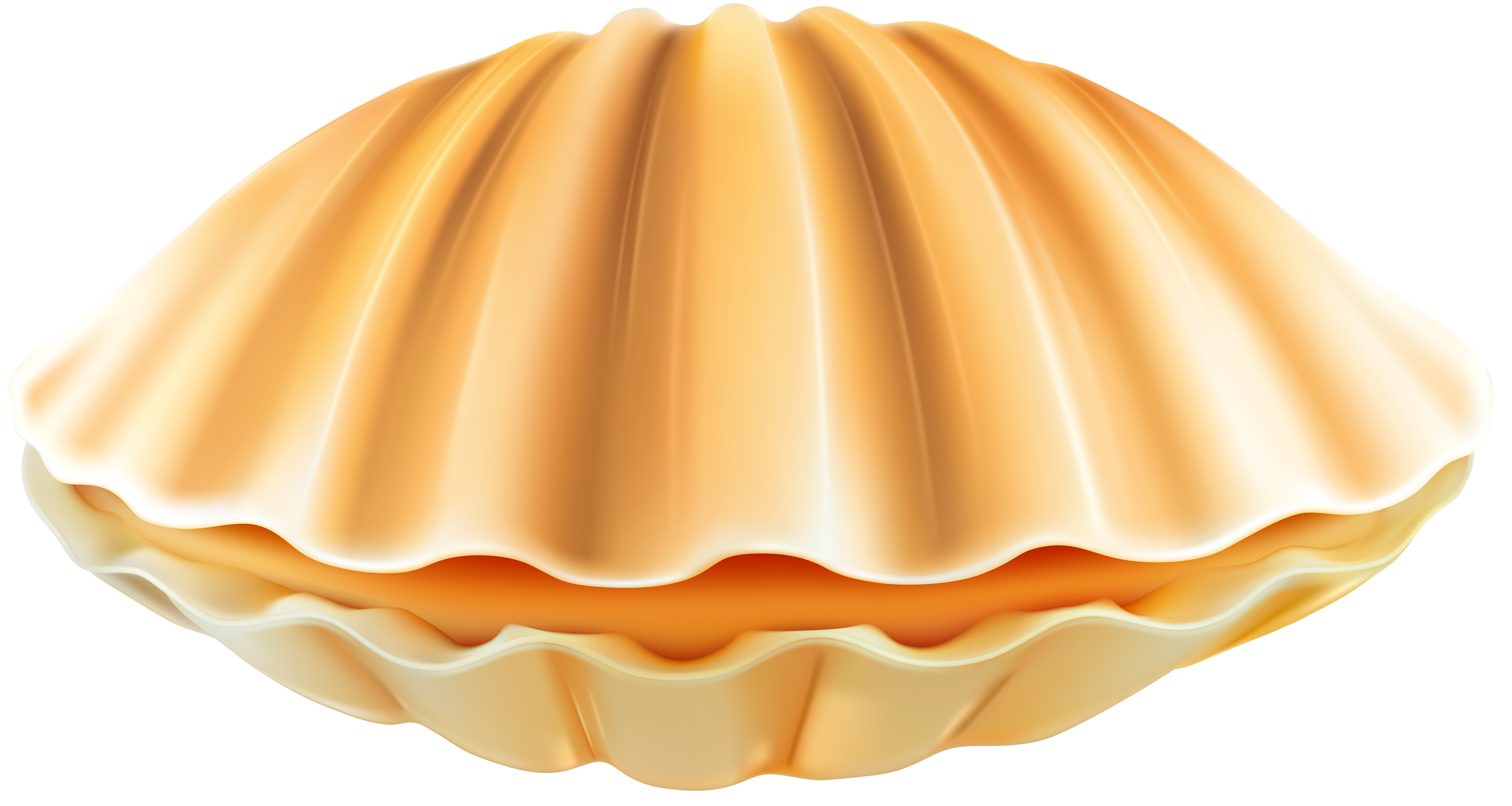 Clam Shell PNG Clip Art Transparent Image.
