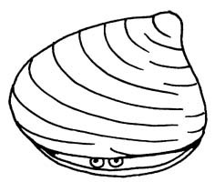 Clams clipart black and white 2 » Clipart Portal.