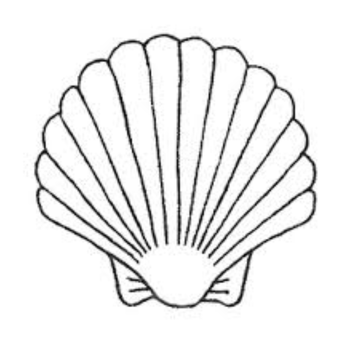 Collection of Shell clipart.