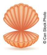 Clam shell Clipart and Stock Illustrations. 1,036 Clam shell.
