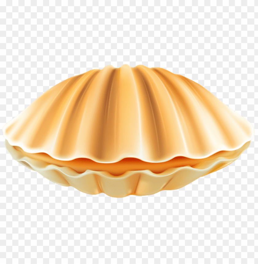 Download clam shell png clipart png photo.