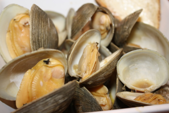Steamed Clams Or Mussels Recipe.