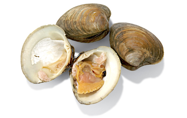 Clams Nutrition Facts.