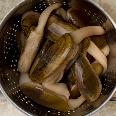 How to clean razor clams.