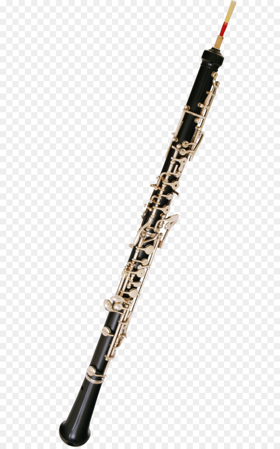 14 cliparts for free. Download Clarinet clipart watercolor and use.