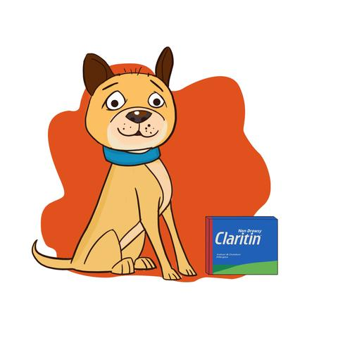 Claritin for Dogs: Yes or No?.