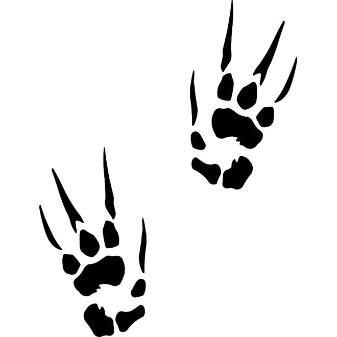 Claw prints vector.