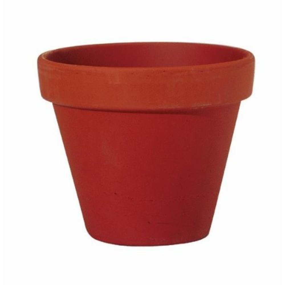 Images Of Flower Pots.